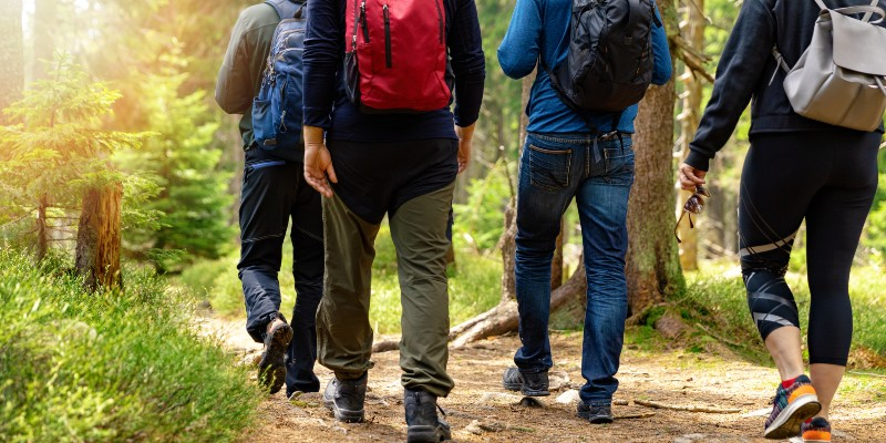 group of people with backpacks walking in the woods